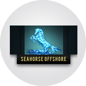 Sea Horse Off Shore